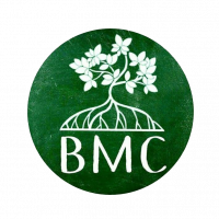 Mangrove Banyu Urip (BMC)